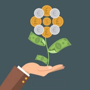geld plant vector