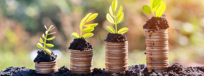 In deze blog de beste keuze voor een duurzame bank in Nederland